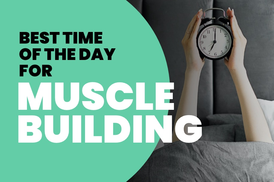 Best Time of the Day for Muscle Building