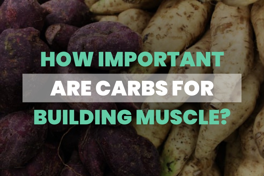 How Important are Carbs for Building Muscle