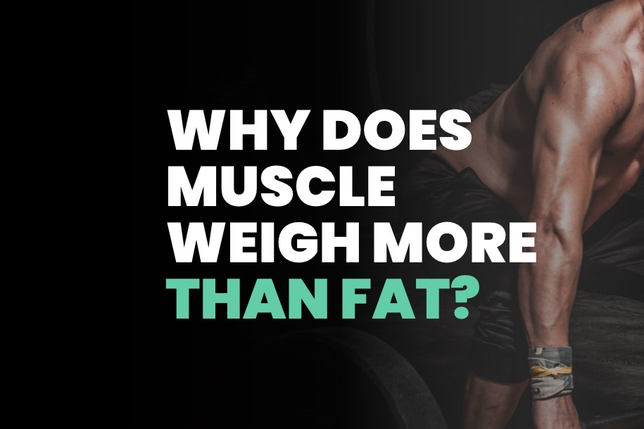 Why Does Muscle Weigh More Than Fat