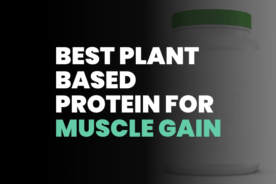 Best Plant Based Protein Powders for Muscle Gain