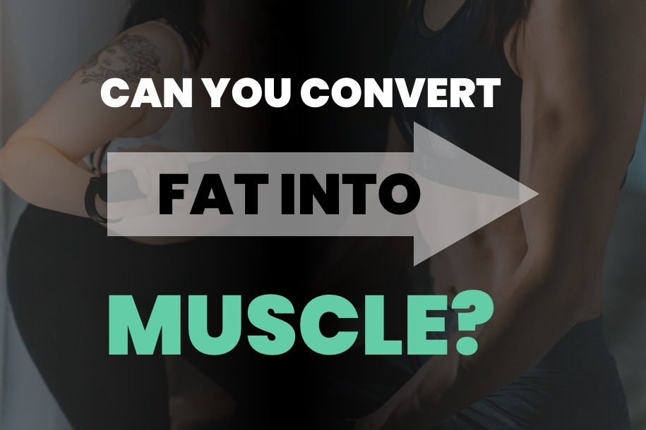 Can You Convert Fat Into Muscle
